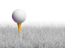 Pelota de golf en te en la hierba blanca Foto de archivo