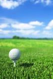 Pelota de golf en te en la hierba verde Fotografía de archivo libre de regalías