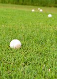 Pelota de golf en tiro de grass Foto de archivo