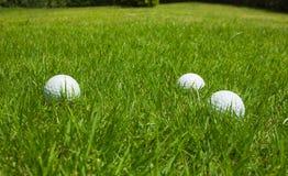 Pelota de golf en un césped verde Fotografía de archivo libre de regalías
