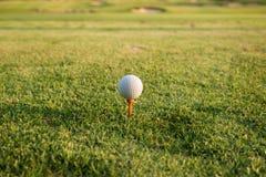 Pelota de golf en una camiseta contra el campo de golf Ciérrese para arriba en el bal del golf Fotografía de archivo