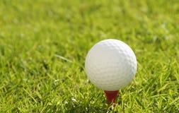 Pelota de golf en una te Imagen de archivo