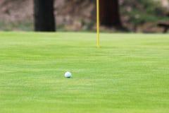 Pelota de golf en verde Imágenes de archivo libres de regalías
