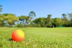 Pelota de golf en verde con escena hermosa de la naturaleza Imágenes de archivo libres de regalías