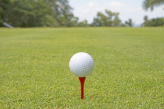 Pelota de golf - imagen común imagenes de archivo