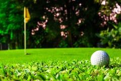 Pelota de golf que consigue en verde Fotos de archivo libres de regalías