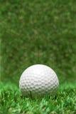 Pelota de golf reclinada en hierba Imagenes de archivo
