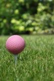 Pelota de golf rosada Fotos de archivo