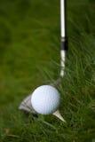 Pelota de golf y te Fotografía de archivo libre de regalías