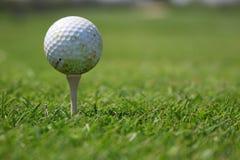 Pelota de golf y te Foto de archivo libre de regalías