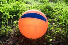 Pelota de playa anaranjada brillante que miente en el césped en la hierba Fotografía de archivo
