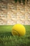 Pelota de tenis amarilla en hierba, con una pared de ladrillo en el fondo Imágenes de archivo libres de regalías