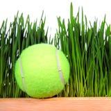 Pelota de tenis en fondo de la hierba Fotos de archivo libres de regalías