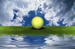 Pelota de tenis en la hierba verde Foto de archivo libre de regalías