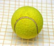 Pelota de tenis en la raqueta Imagen de archivo libre de regalías