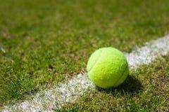 Pelota de tenis en una corte de hierba Imagen de archivo libre de regalías