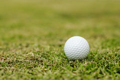 Pelotas de golf en hierba Imágenes de archivo libres de regalías