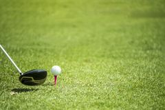 Pelotas de golf y conductor en hierba verde Fotos de archivo libres de regalías