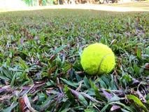 Pelotas de tenis en el césped imagenes de archivo