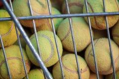 Pelotas de tenis verdes en caja especial Concepto del deporte Foto de archivo