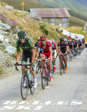 Peloton в горах - Тур-де-Франс 2015 Стоковое фото RF
