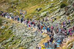 Peloton в горах - Тур-де-Франс 2016 Стоковые Изображения RF