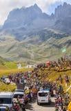 Peloton в горах - Тур-де-Франс 2016 Стоковое Фото