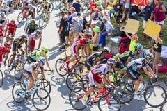 Peloton в горах - Тур-де-Франс 2015 Стоковая Фотография