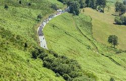 Peloton на d'Aspin Col - Тур-де-Франс 2015 Стоковое Изображение RF