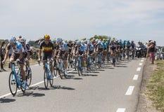 Peloton - Тур-де-Франс 2017 Стоковое Изображение