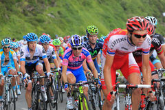 The Peloton. Beost,France,July 15th 2011: Image of the peloton climbing the category H mountain pass Abisque in the 13th stage of the 2011 edition of Le Tour de Stock Images