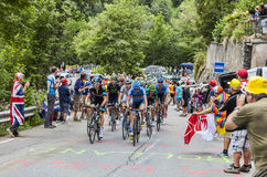 The Peloton on Alpe D'Huez Royalty Free Stock Images