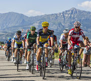 The Peloton in Alps Royalty Free Stock Images