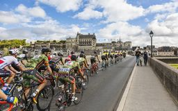 The Peloton and the Amboise Chateau- Paris-Tours 2017 stock photography