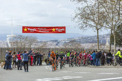 Peloton in Barcelona - Tour DE Catalunya 2016 Royalty-vrije Stock Fotografie