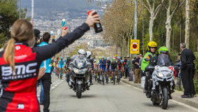 The Peloton in Barcelona - Tour de Catalunya 2016. Barcelona, Spain - March27, 2016: The peloton approaching the alimentation point, during Volta Ciclista a Stock Photos