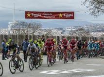 The Peloton in Barcelona - Tour de Catalunya 2016 Stock Photos