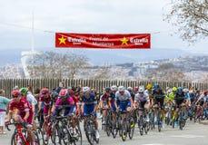 The Peloton in Barcelona - Tour de Catalunya 2016 Stock Image