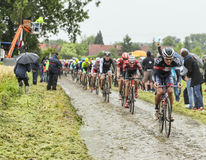 The Peloton on a Cobbled Road- Tour de France 2014 Stock Image