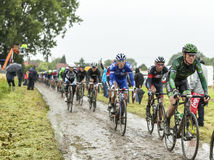 The Peloton on a Cobbled Road- Tour de France 2014 Royalty Free Stock Photos