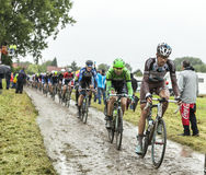 The Peloton on a Cobbled Road- Tour de France 2014 Stock Photography