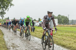 The Peloton on a Cobblestone Road - Tour de France 2014 Royalty Free Stock Images