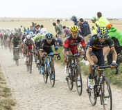 The Peloton on a Cobblestone Road - Tour de France 2015 Stock Image