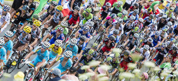 The Peloton Stock Photography
