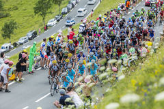 The Peloton on Col de Peyresourde - Tour de France 2014 Stock Image