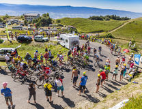 The Peloton on Col du Grand Colombier - Tour de France 2016. Col du Grand Colombier,France - July 17, 2016: The peloton riding in a hairpin curve at Col du Grand Stock Images