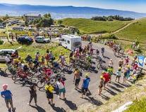 The Peloton on Col du Grand Colombier - Tour de France 2016 Stock Images
