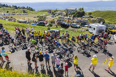 The Peloton on Col du Grand Colombier - Tour de France 2016. Col du Grand Colombier,France - July 17, 2016: The peloton riding in a hairpin curve at Col du Grand Royalty Free Stock Image