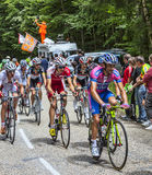 The Peloton. Col du Granier,France-July 13th, 2012:  Cyclists from various teams climbing together the road to mountain pass Granier during the stage 12 of the Stock Photography