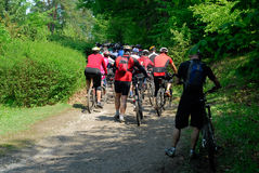 Peloton crowd of bicycle riders racers from back in forest hill section Royalty Free Stock Photography